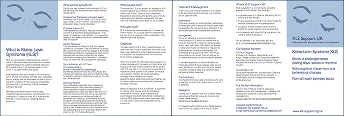 A small image of our leaflet